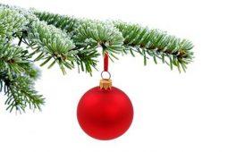10469443-kerstboom-groenblijvende-vuren-en-rode-glas-bal